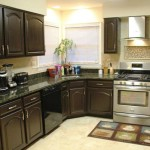 paint ideas for kitchens with dark cabinets