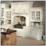 elegant kitchen pictures