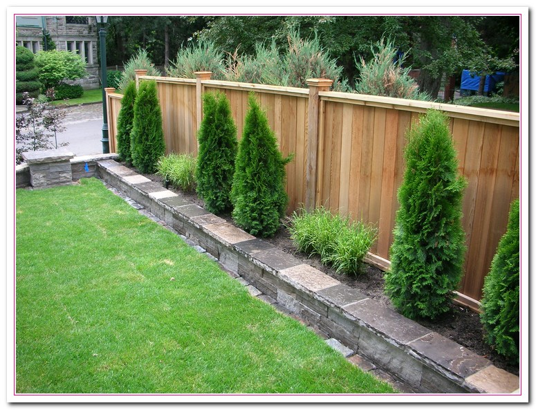 backyard fence ideas pictures